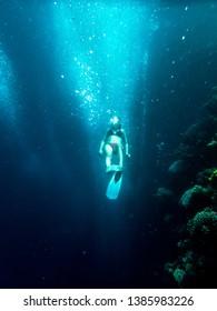 Snorkeling in Dahab Blue Hole reed