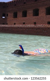 Snorkeling at Dry Tortugas National Park