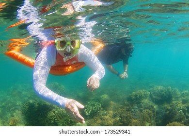 Snorkeling on Great Barrier Reef