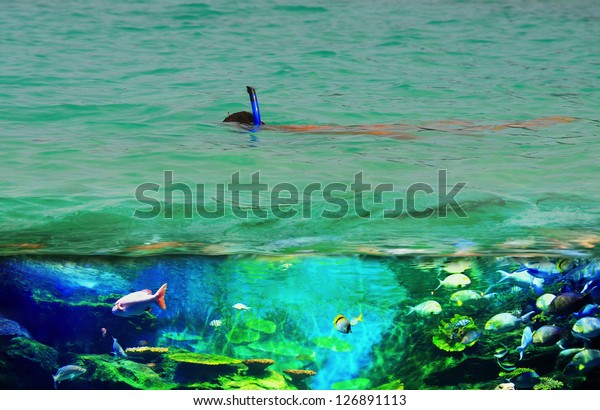 Snorkeling in the open sea on a sunny day