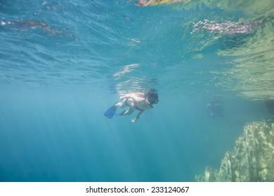 Snorkeling in tropical sea.
