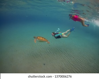 Snorkelling with turtles Views arund the small caribbean Island of Curacao