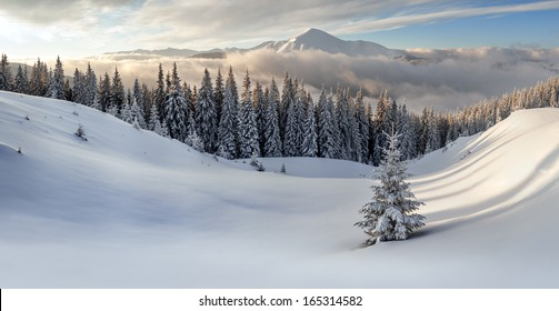 snovy mountain in winter time