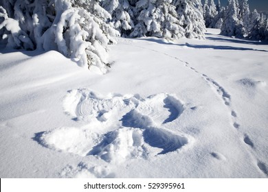 Snow angel on clean snow in the forest