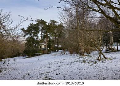 Snow begins to clear around the moorland smallholding garden