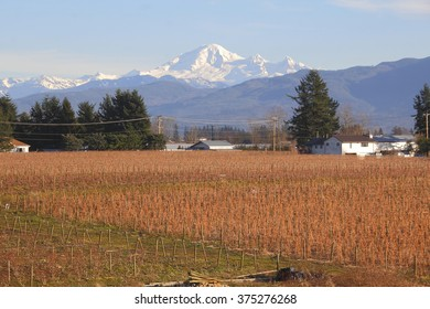 A snow capped Mount Baker seen from the Canadian side of the border/Mount Baker From Canadian Perspective/A snow capped Mount Baker seen from the Canadian side of the border.