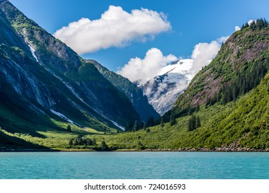 A snow capped mountain makes itself known through a gap in the green forested shoreline along Tracy Arm Fjord in Alaska.