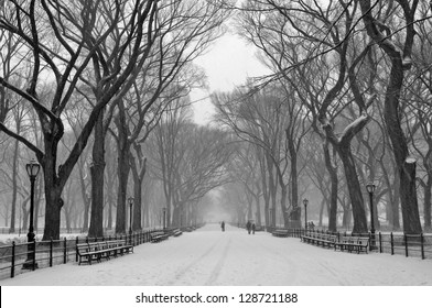Snow at Central Park