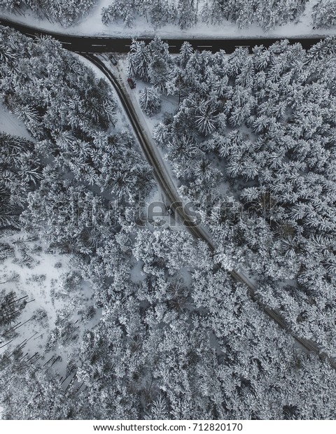 Snow covered alpine forest from above