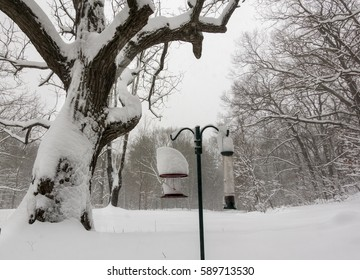 snow covered bird feeders with trees