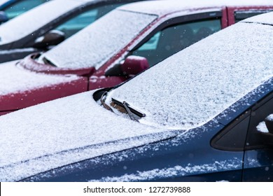 Snow covered cars in the parking, close up. Antifreeze was not used. Vehicles in snow. Winter time is coming. Bad weather conditions