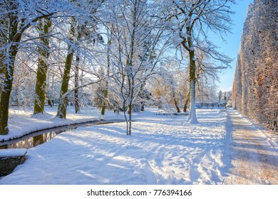 Snow covered city park in a winter day. Oliwa, Poland.