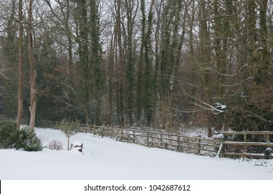 Snow Covered Country Cottage Front Garden in Rural Devon, England, UK
