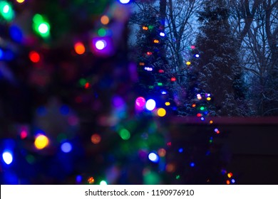 Snow covered evergreen trees at night with defocused illuminated Christmas tree in the foreground. Christmas background.