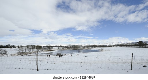 Snow covered farmlands in the foothills of the Drakensberg, Underberg,kwazulu Natal, South Africa