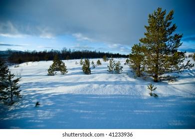 a snow covered field in Norway