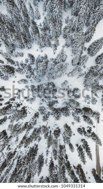 Snow covered forest from above in Austria. Took my drone out for a flight in this white spring morning.