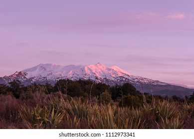 Snow covered Mount Ruapehu, an active volcano on the Central Plateau of the North Island of New Zealand. Viewed from the west at sunset.