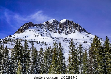 Snow covered mountain peak surrounded by pine trees in alpine forest on sunny winter morning