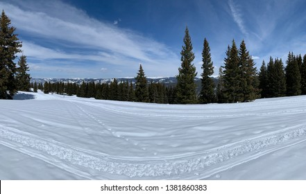 Snow covered mountains with Pine trees and blue sky