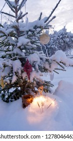 A snow covered natural spruce Christmas tree with illuminated colorful lights