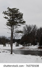 Snow covered park - winter scene