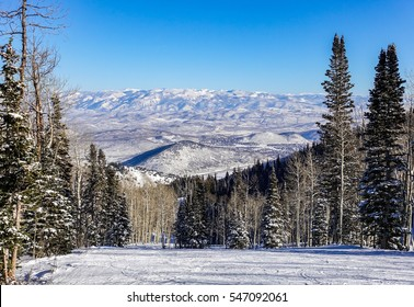 Snow covered pine trees line the slopes of The Canyons, at the Park City Mountain Resort, near Salt Lake City, Utah, Unites States, as skiers enjoy a sunny winter day in Wasatch Mountain Range.