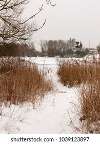 snow covered pontoon near lake with reeds frozen winter day; essex; england; uk