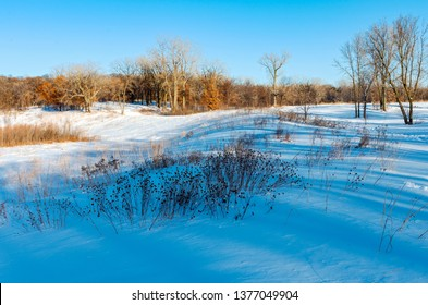 snow covered prairie and forest landscape in battle creek regional park of saint paul minnesota