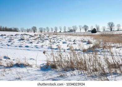 snow covered prairie of spring lake park reserve outside hastings in dakota county minnesota