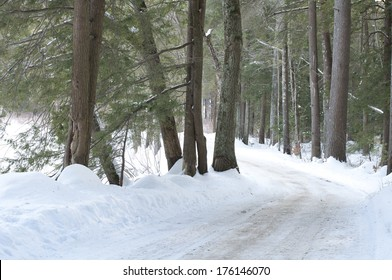 A snow covered road through a coniferous forest in New England.