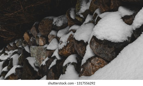 Snow covered rock wall with overhanging bush