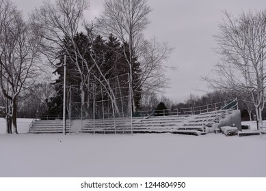 A snow covered stage of bleacher seats with batting cage in front and snowy covered trees behind.