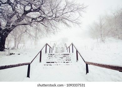 Snow covered stairs and railings