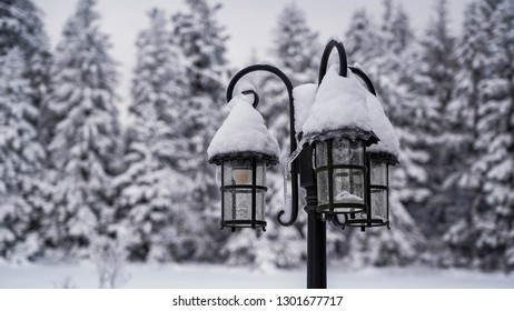 snow covered street lamp, tripple vintage lantern with trees in the background