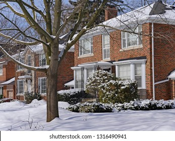 snow covered suburban houses on a treelined street