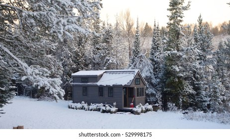 Snow covered tiny house in a clearing.