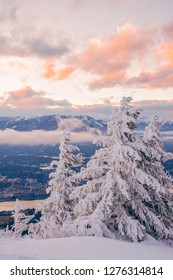 Snow covered trees on the summit of Mount Swansea at sunset, near Invermere, British Columbia, Canada - Winter theme