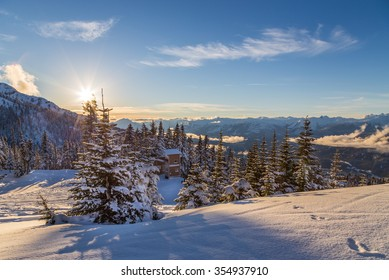Snow covered trees with Whistler Creekside valley in the background.