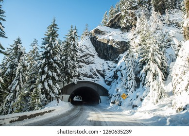 A snow covered tunnel surrounded by trees in the mountains - Washington state