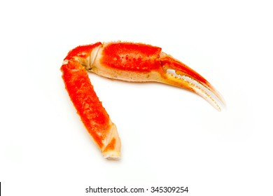 Snow crab (Chionoecetes opilio) or Tanner crab claw isolated on a white studio background.
