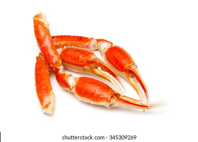 Snow crab (Chionoecetes opilio) or Tanner crab claws isolated on a white studio background.