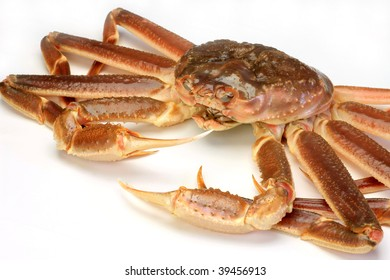 snow crab(raw)