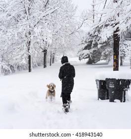 Snow Day - Denver, Colorado