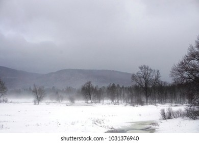 A snow eating fog of a Northern January thaw