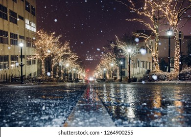 Snow is falling, Christmas Street tree night light and illumination view on trees, see the yacht from top hill on road direct to Hakodate Harbor at Motomachi Area, Hokkaido, Japan.