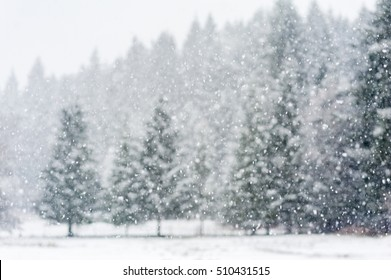 Snow falling heavily in an evergreen forest with focus on snowflakes creating a winter wonderland