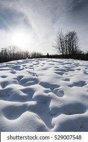 Snow field Texture Background. Sunlight on snowdrift