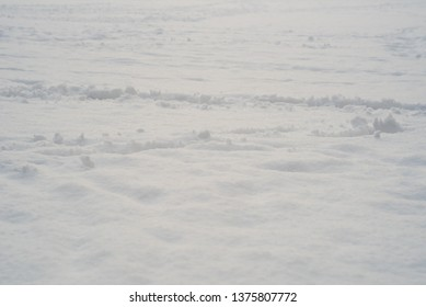 snow field with traces