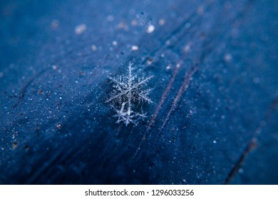 snow flake close up